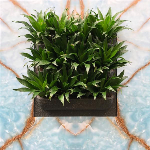 Plantenschilderij-Plaq-Heaven